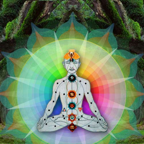 vibrational testing Where to Start Vesica Institute for Holistic Studies